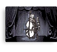 Cat Performs On His Double Bass Canvas Print