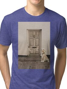 Waiting Patiently Tri-blend T-Shirt
