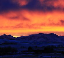 Mountainview Sunset by Alyce Taylor