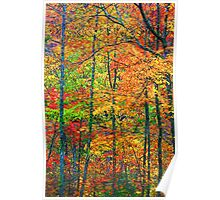 FOREST,AUTUMN Poster
