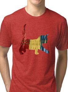 Chameleon Cat Tri-blend T-Shirt