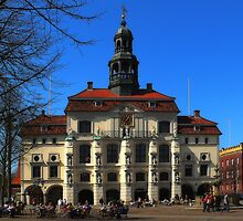 Lüneburg Townhall by herbspics