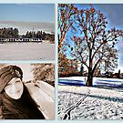 Impressions of a Winter's Day by ©The Creative  Minds