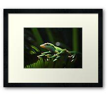Little Lizard On A Sago Palm Tree Framed Print