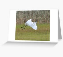 White Heron in Flight Greeting Card