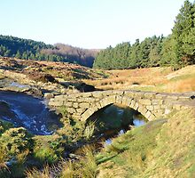 Packhorse Bridge by Blagnys