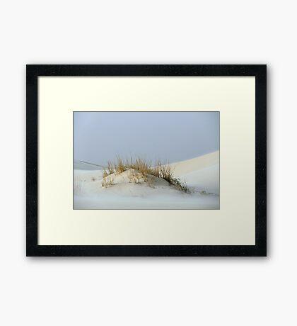 Monahans White Sand Hills ~ Desert Life ~2 Framed Print