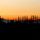 A wonderful early morning Rise~! by Brenda Dahl