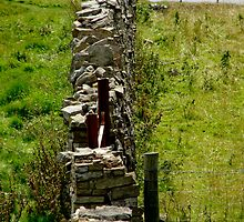 Stonewalled by tunna