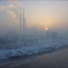 Good morning foggy sunshine. by © Andrzej Goszcz,M.D. Ph.D