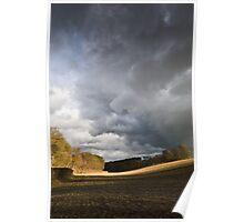 Winter field, showers (portrait) Poster