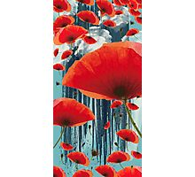 Poppy Love Photographic Print