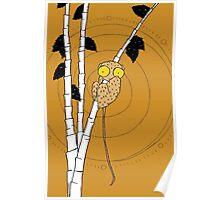 Lemur in Tree by Amanda Jones Poster