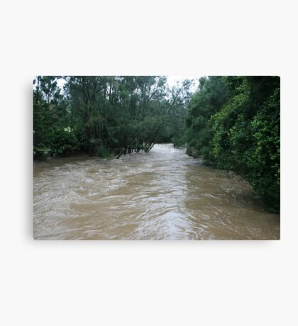The Rains Are Here: Tallebudgera Creek Flooded Canvas Print