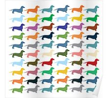 Dachshunds pattern Poster