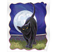Animal Parade Black Cat Poster