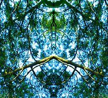 Kaleidoscopic by MissMA