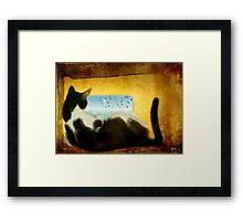 Finn's World Framed Print