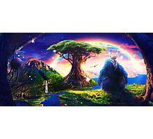 Ori and the Blind Forest Photographic Print