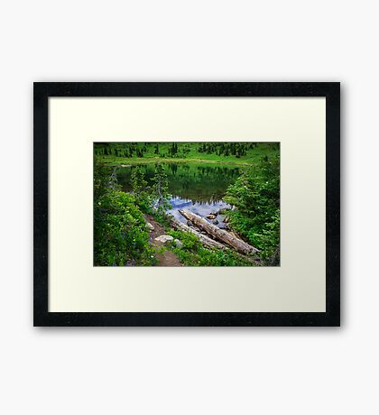 Tipsoo Lake Washington Framed Print