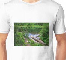Tipsoo Lake Washington Unisex T-Shirt