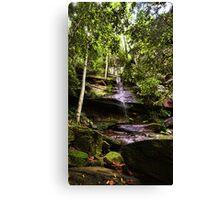 Strickland Falls, Central Coast NSW Canvas Print