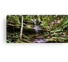 Strickland Falls, Central Coast NSW Canvas Print