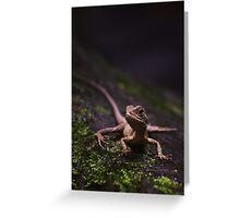Eastern Water Dragon - Strickland Falls, NSW Greeting Card