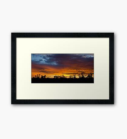 Our Front Yard  Framed Print