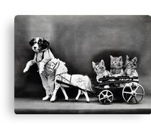 Vintage Puppies and Kittens  Canvas Print