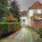 A silent street in autumn by Thea 65