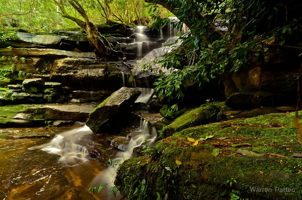 Bottom Falls (28-1-12) by Warren  Patten
