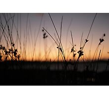 where the sun meets the earth....... Photographic Print