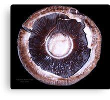 Portobello Mushroom Canvas Print