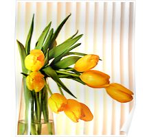 Still life in yellow tulips Poster