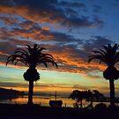 Palm Sunrise by paintin4him