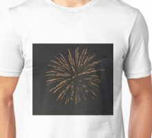 HAPPY 4TH.FROM PALM DESERT 9 Unisex T-Shirt