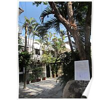 A tranquil Place in the Heart of the Zona Romantica - Un Lugar tranquilo Poster