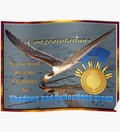 Challenge Winner Shadows and Reflections Group Poster