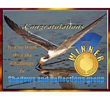 Challenge Winner Shadows and Reflections Group Photographic Print