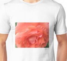 Macro of a Peach Rose in Full Bloom: Hope You Enjoy  Unisex T-Shirt