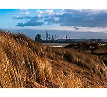 Dune grasses and chemical plant Photographic Print