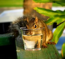 I'm Awfully Hot... May I Have a Drink Please?? by Debbie Robbins