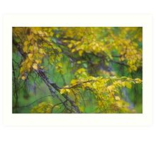 Dreamy Photo . 7 ★★★★★ .  ####  Painting by earlyeau ! autumn  ####.  Norway. 2011. « Arrête-toi, tu es si b»  . Views: 749 . Featured Avant - Garde Art. Art Print