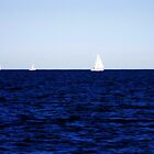 sailing II by Floralynne