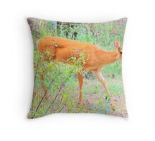Rural Country Garden Throw Pillow