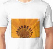 Gazania Macro Details Unisex T-Shirt