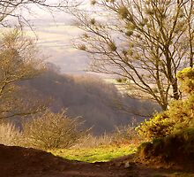 Looking Down to Taunton Vale by Mike  Waldron