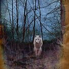 Dark Forest And The Ghost Wolf by SunDwn