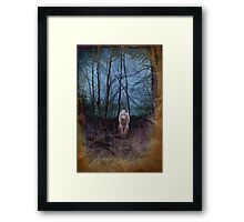 Dark Forest And The Ghost Wolf Framed Print